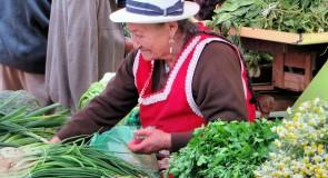 L'Équateur, un pays à découvrir
