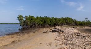 [La Casamance] un patrimoine culturel et historique riche
