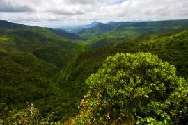 L'île Maurice, le paradis des randonneurs de montagne