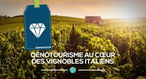 Oenotourisme au cœur des vignobles Italiens