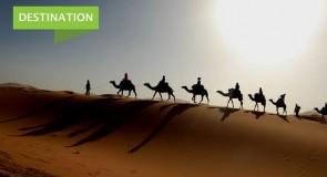 Cure Vac organise un éducotour au Maroc du 26 avril au 05 mai 2019