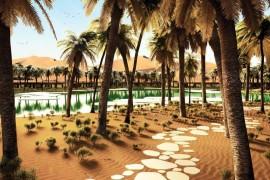 Oasis Eco Resort, un projet écologique autour d'une oasis