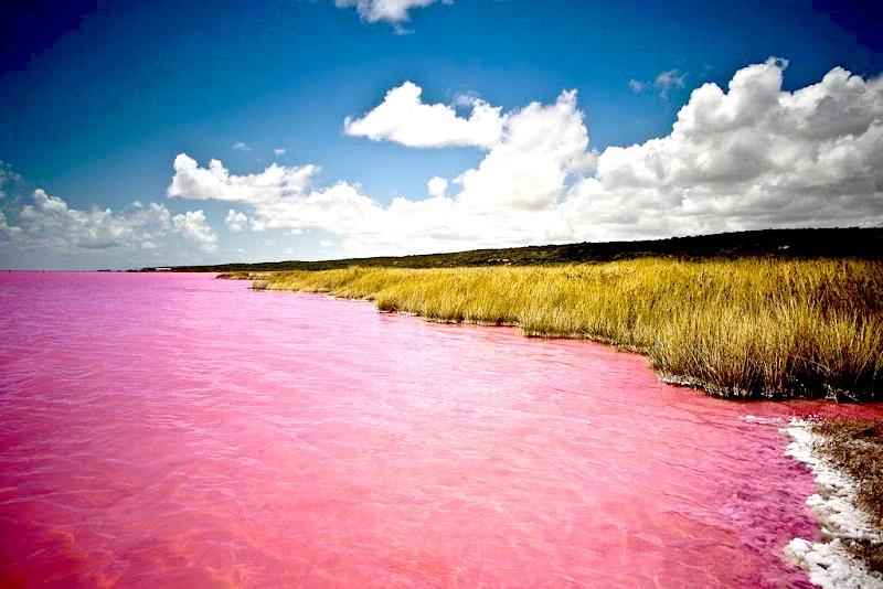 Lac-Rose-Afrique