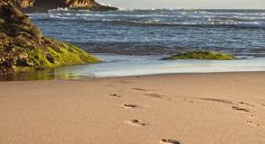 [Techno] Portugal: une trentaine de plages avec wifi gratuit