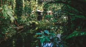 [TOP] Les plus beaux hôtels dans la jungle!
