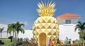 [Hôtel] Une villa dans un… ananas!