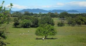 La péninsule de Nicoya, un paradis Costa Ricain