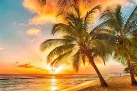 AMResorts construira deux hôtels tout inclus à Sainte-Lucie