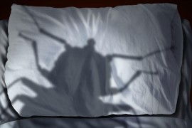 [Conseils] pour éviter les punaises de lit en voyage