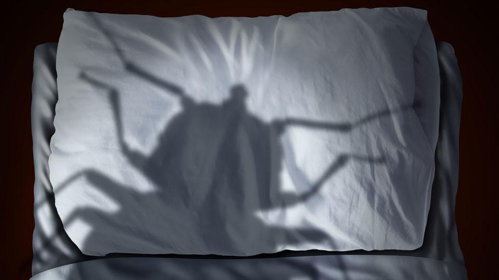 conseils pour viter les punaises de lit en voyage profession voyages. Black Bedroom Furniture Sets. Home Design Ideas