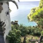 les-acores-pico-ilha-4