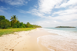 La Martinique insolite