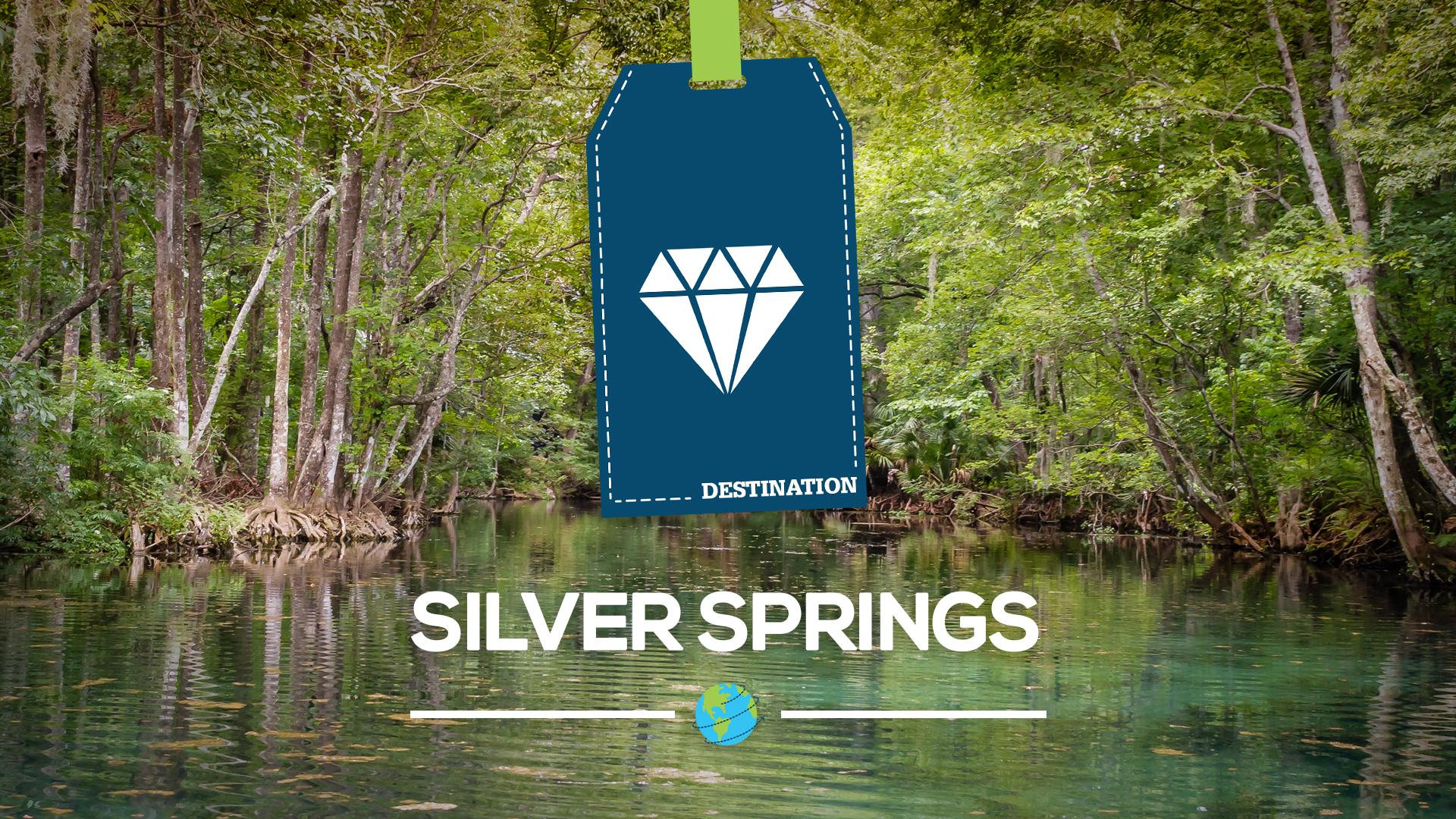 silver springs floride