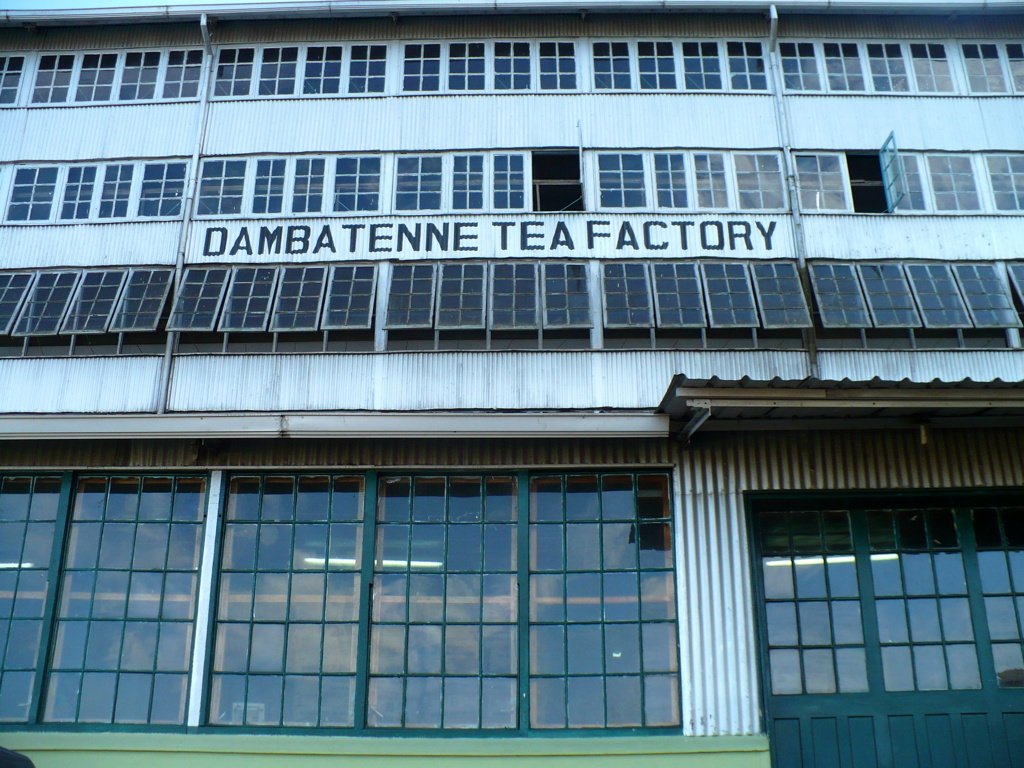 usine lipton dambatenne thé sri lanka