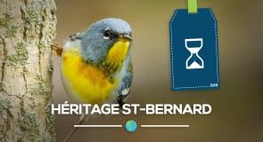 [Héritage St-Bernard] Un joyau au Québec