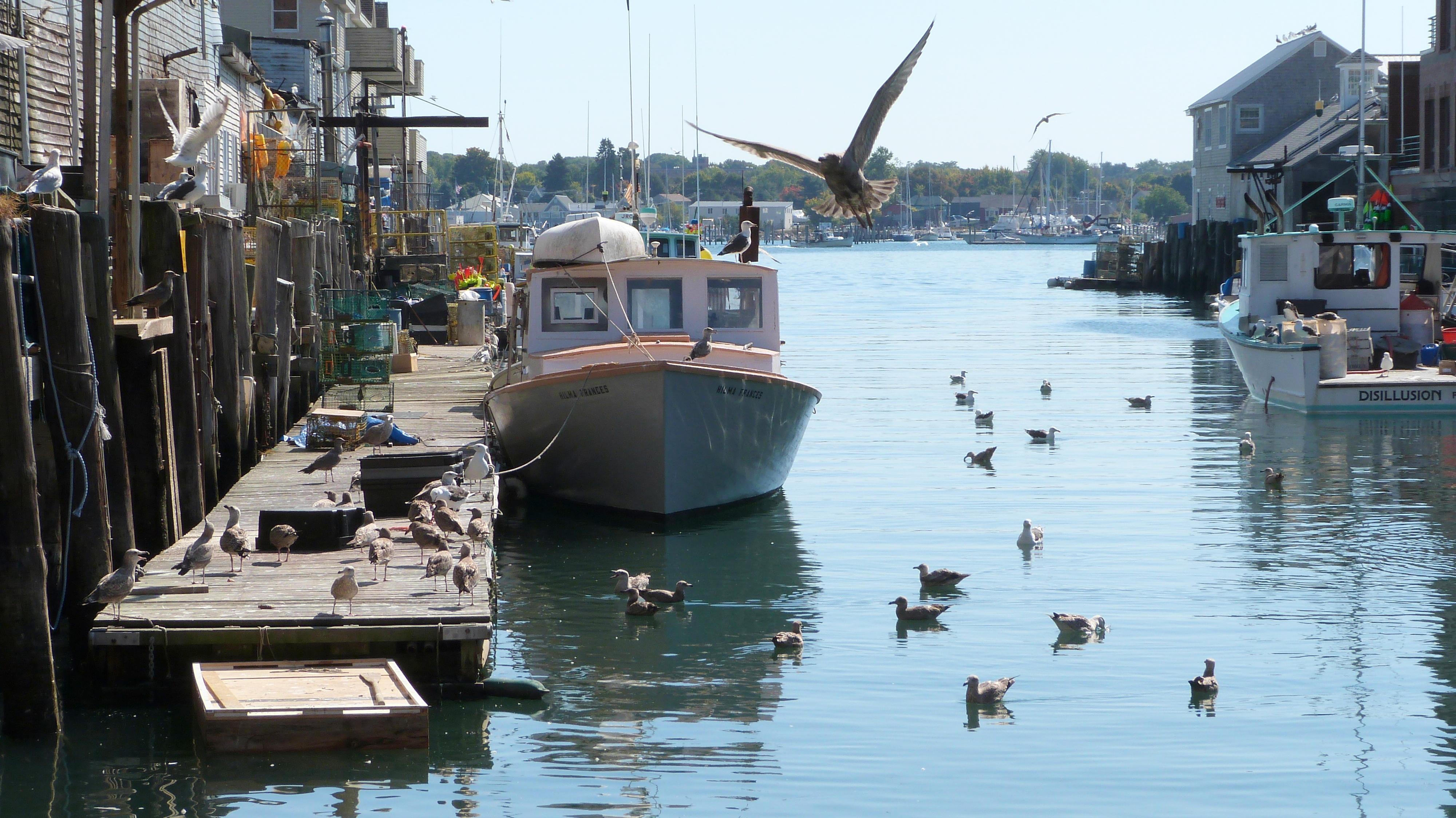 port de portland