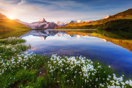 [Tendance] La Suisse: des chiffres éloquents pour 2016