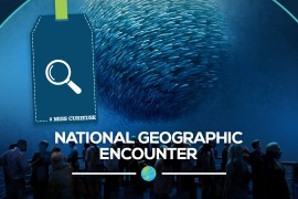 National Geographic Encounter: l'attraction la plus attendue de New-York