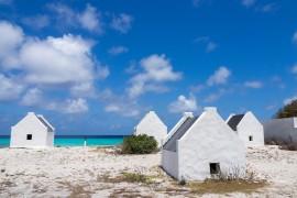 [Sunwing] offre maintenant des vols directs exclusifs vers l'île de Bonaire
