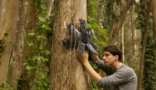 Votre ancien téléphone portable pour aider la forêt tropicale