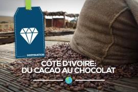 [Côte d'Ivoire] Du cacao au chocolat