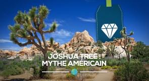 [Joshua Tree] Mythe californien