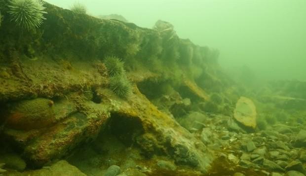 [Quebec] La route des épaves: à la découverte d'un patrimoine méconnu