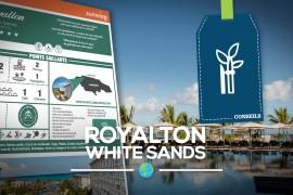 [Fiches Hôtels] Le Royalton White Sands en Jamaïque