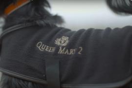 Le Queen Mary 2 : l'unique navire acceptant les animaux de compagnie