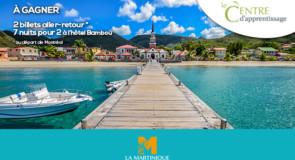 [Webinaire] Nouveau programme de formation sur la Martinique