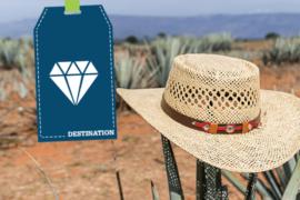 Jalisco: la destination «tequila» sans modération!