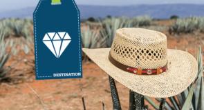 [Jalisco] La destination «tequila» sans modération!