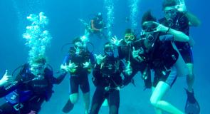 [Yucatan] Les meilleurs sites de plongée dans la péninsule