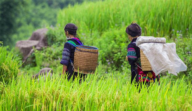 Hanh Travel bonifie son offre sur l'Asie avec notamment un circuit à Bali
