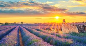 [Éducotour] France: la Provence en randonnée avec Sentiers du Monde