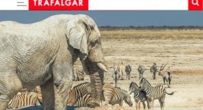 Trafalgar proposera l'Afrique dès décembre 2018
