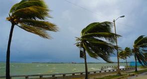 Il y aura moins d'ouragans en 2019: découvrez les prévisions!