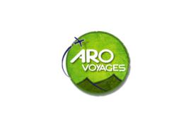 Coordonnateur de programmes culturels et conseiller en voyages