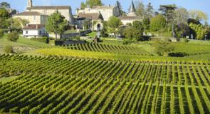 Bordeaux: une destination idéale pour les Québécois amateurs de vins et de golf