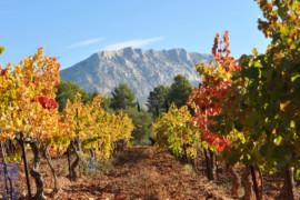Sud de la France: que faire lors d'un voyage à Aix-en-Provence?