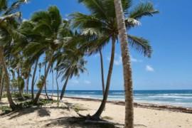 République dominicaine: un nouvel hôtel réservé aux adultes en construction à Punta Cana