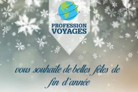 Profession Voyages annonce une année 2019 (très) glorieuse