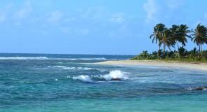 Des attractions touristiques pour profiter de la Guadeloupe