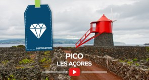[Les Açores] Ilha do Pico
