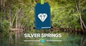 [Floride] La magie de Silver Springs