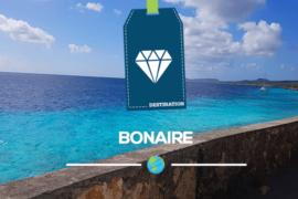 Bonaire: une destination recommandée pour les personnes angoissées