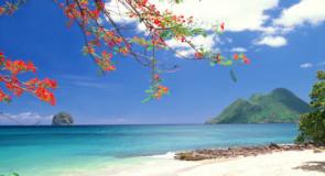 La Martinique accentue ses mesures drastiques dans la lutte contre la COVID-19
