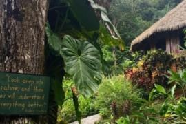 Le Costa Rica authentique: cap sur la péninsule d'Osa et ses hébergements