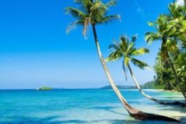 VOYAGEZ DE LA MAISON : une balade sur les plages des Caraïbes