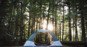 Réservation chalets/camping 2021 – Ajout de nouvelles possibilités pour un été en nature